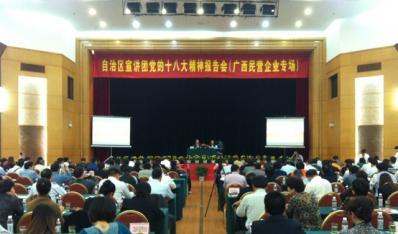 自治区宣讲团党的十八大精神民营企业专场报...